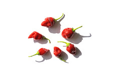 Scotch Bonnet Safi